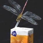 Стакан натурального апельсинового сока — спасение от нездоровой пищи