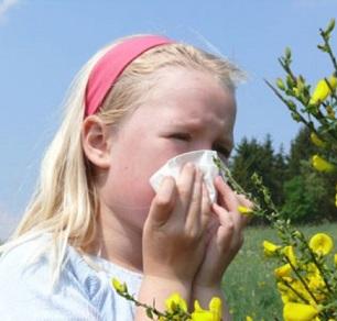 Алергія- народні методи лікування