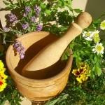Лікарські рослини і трави для дітей