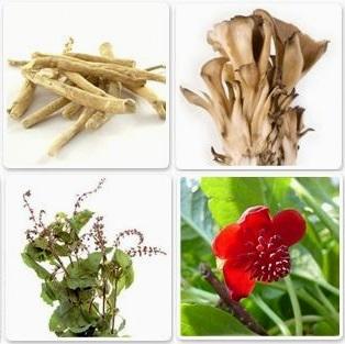 Адаптогени рослинного походження, норми застосування.