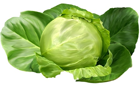 Якщо шишки після уколів - лікування капустою.