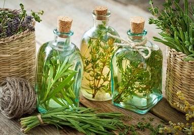 Які трави допомагають при атеросклерозі.